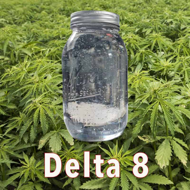 What is Delta 8? Find out the latest about this amazing substance