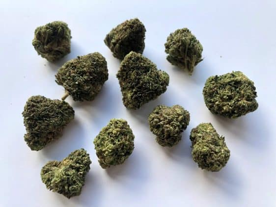 More Bubba Kush Buds! Incredibly well trimmed hemp flower from The Hemp Collective in PDX