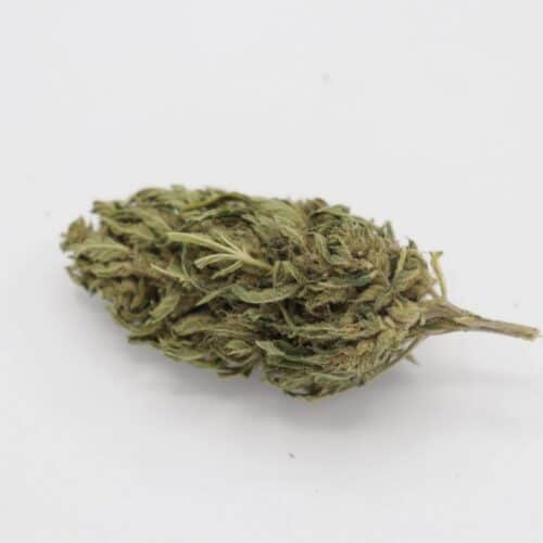 suver haze hemp flower for sale in pounds