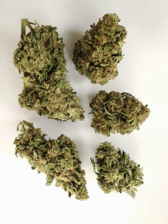 umpqua hemp flower limited buds